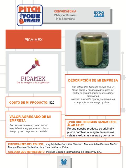 PYB-Picamex